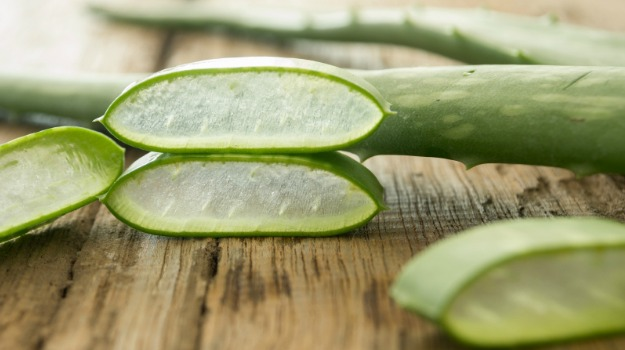 aloe vera place the pieces on a wooden table. soft focus